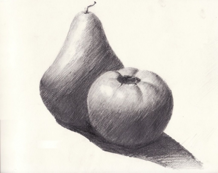 Wonderful Fruits Pencil Shading Simple Still Life Drawing Of Fruits - Google Search | Seni Sana Sini Photos