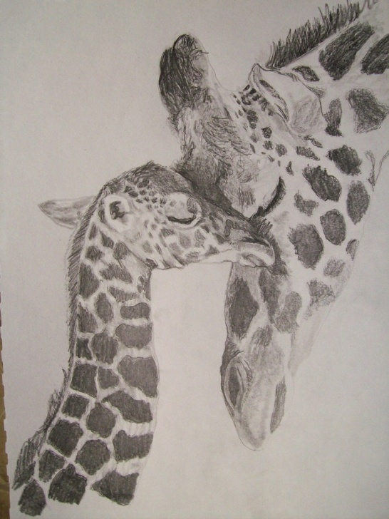 Wonderful Giraffe Pencil Sketch Techniques for Beginners Giraffe Portrait Pencil Sketch 9 X 12 Inch U Provide Picture By Pigatopia Pic