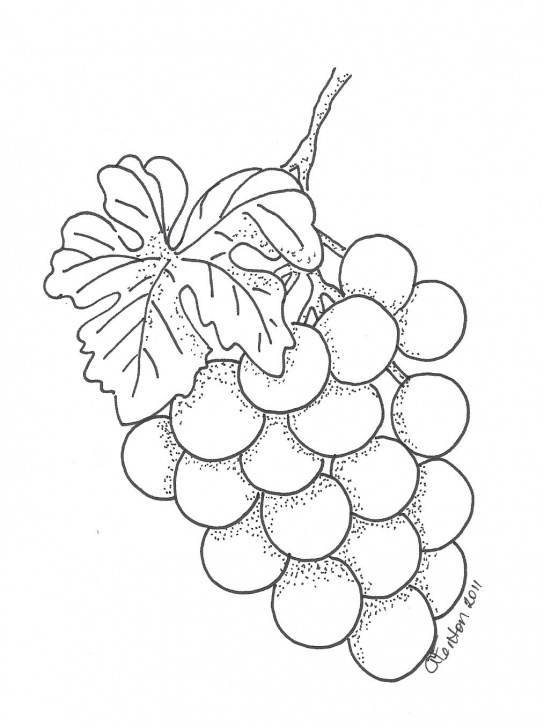 Wonderful Grapes Pencil Drawing Tutorial Grapes | Patterns | Fruit Coloring Pages, Pencil Drawings Pic