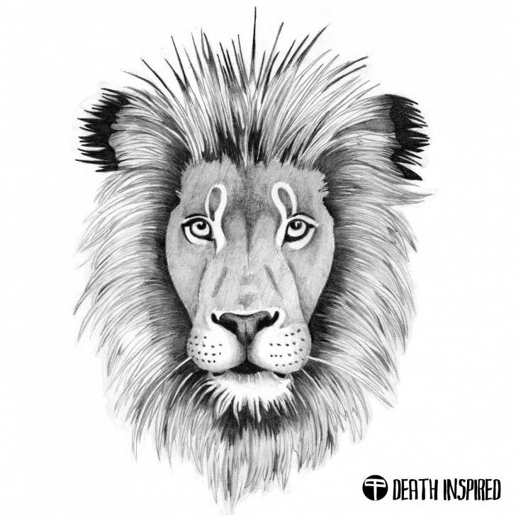Wonderful Lion Face Pencil Drawing Techniques Pencil Drawing Of The Lion Head. Tattoo Idea. | Pencil Drawings By Image
