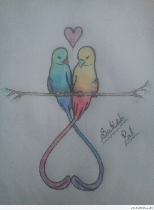 Wonderful Love Birds Sketch Courses Pencil Color Sketch Of Love Bird | Desipainters Pics