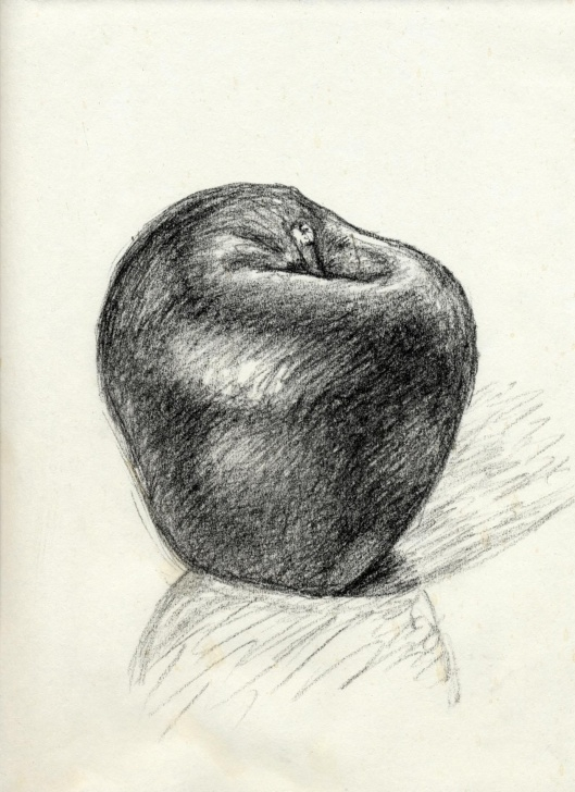 Wonderful Pencil Drawing Of Apple Step by Step Charcoal Pencil Drawing Of An Apple. | Painting, Drawing And Pic