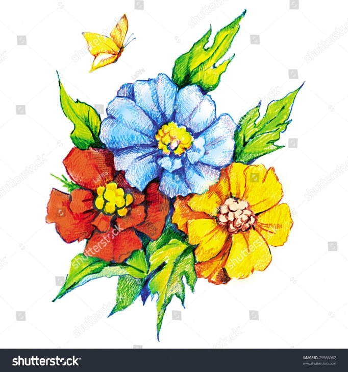 Wonderful Pencil Drawings Of Flowers And Butterflies With Colours for Beginners Colour Pencil Drawings Flowers And Beautiful Flowers Butterfly Image