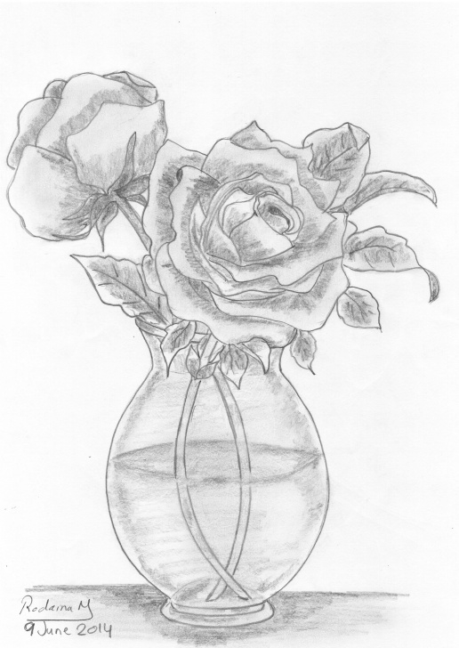 Wonderful Pencil Sketch Of Flower Vase Tutorial Vase Of Roses Drawn In 2014 #pencil #sketch #roses #flowers #vase Photos