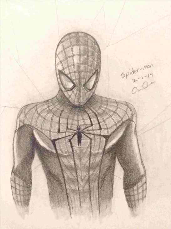 Wonderful Spiderman Pencil Drawing Courses The-Spiderman-Awesome-Pencil-Drawing-Amazing-Spidey-Detchasketch-S Photos