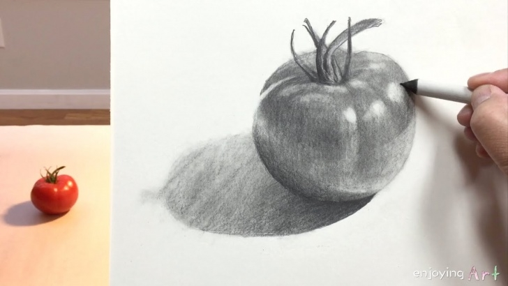 Wonderful Tomato Pencil Drawing Tutorials Still Life #30 - How To Draw A Tomato For Beginners Image