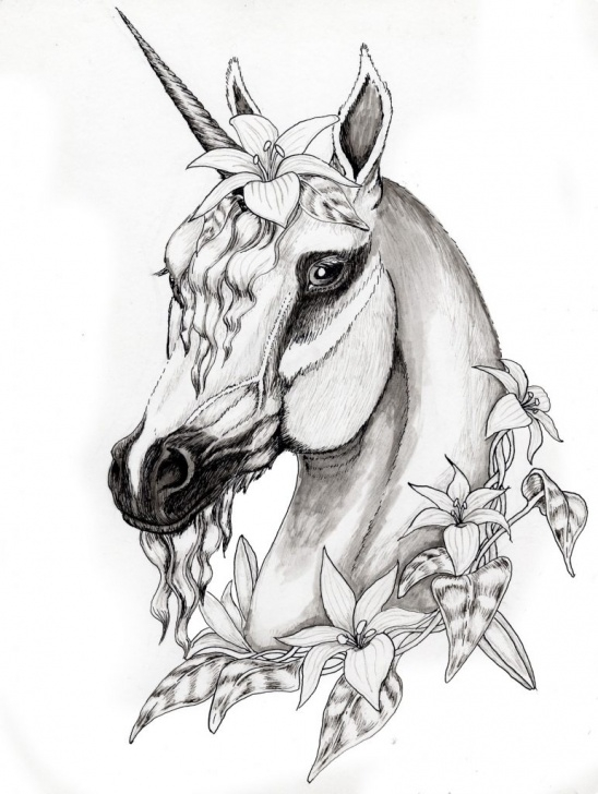Wonderful Unicorn Pencil Drawing for Beginners Unicorn Pencil Drawing At Paintingvalley | Explore Collection Of Photos