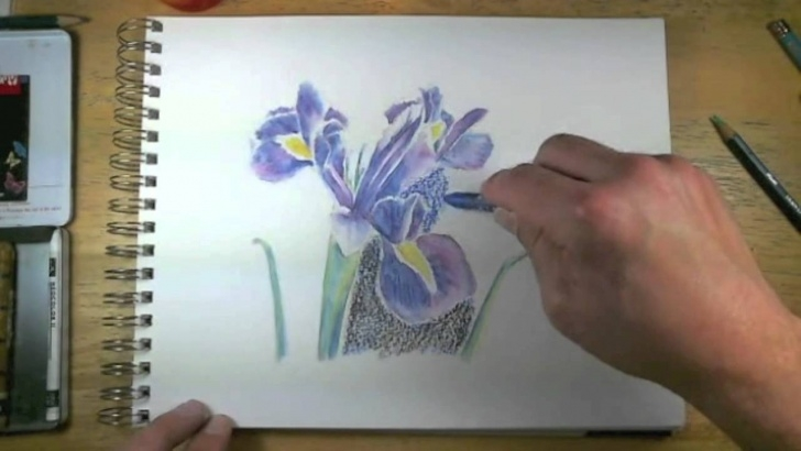 Wonderful Watercolor Sketch Pencil Step by Step How To Draw With Watercolor Pencils - Live Lesson Excerpts Image