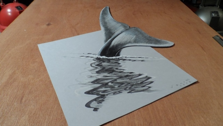 Wonderful Whale Pencil Drawing for Beginners Art 3D Drawing Blue Whale, How To Draw 3D Whale? Pic